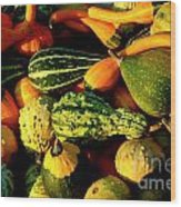Squash In Morning Light Wood Print