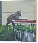 Squirrel Going Shopping Wood Print