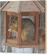 Squirrel Sneaking Food Wood Print
