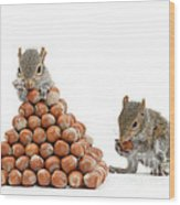 Squirrels And Nut Pyramid Wood Print