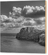 St Catherines Rock Tenby Wood Print by Steve Purnell