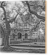 St. Charles Ave. Mansion Monochrome Wood Print