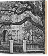St. Charles Ave. Monochrome Wood Print
