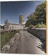 St Davids Cathedral Pembrokeshire 2 Wood Print