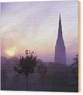 St Eugenes Cathedral, From Brooke Park Wood Print