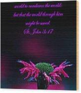 St. John 3  17  And Bee Balm Wood Print