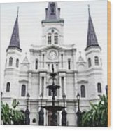 St Louis Cathedral And Fountain Jackson Square French Quarter New Orleans Diffuse Glow Digital Art Wood Print