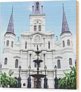 St Louis Cathedral And Fountain Jackson Square French Quarter New Orleans Film Grain Digital Art Wood Print