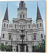 St Louis Cathedral And Fountain Jackson Square French Quarter New Orleans Poster Edges Digital Art Wood Print