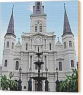 St Louis Cathedral And Fountain Jackson Square French Quarter New Orleans  Wood Print