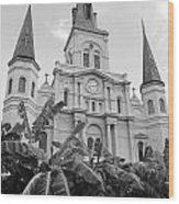 St Louis Cathedral Rising Above Palms Jackson Square French Quarter New Orleans Black And White Wood Print