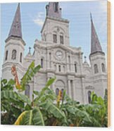 St Louis Cathedral Rising Above Palms Jackson Square French Quarter New Orleans Print  Wood Print