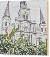 St Louis Cathedral Rising Above Palms Jackson Square New Orleans Colored Pencil Digital Art Wood Print