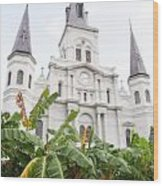 St Louis Cathedral Rising Above Palms Jackson Square New Orleans Diffuse Glow Digital Art Wood Print