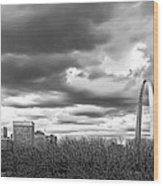 St. Louis Gateway Arch Wood Print