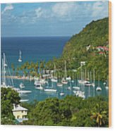 St Lucia Wood Print