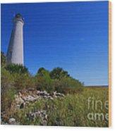 St Marks Lighthouse Along The Gulf Coastst Wood Print