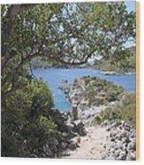 St Nicholas Island Wood Print