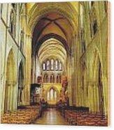 St. Patricks Cathedral, Dublin, Ireland Wood Print