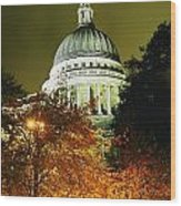 St Pauls Cathedral At Night With Trees Wood Print