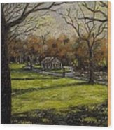 St. Stephen's Green Dublin Wood Print by John  Nolan