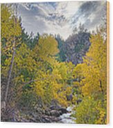 St Vrain Canyon Autumn Colorado View Wood Print