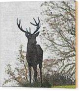 Stag On Hillside Wood Print