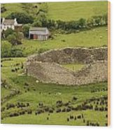 Staigue Fort, Kerry Wood Print