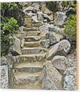 Staircase To Eagle Falls Lake Tahoe Wood Print