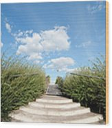 Stairs To The Big Blue Sky Wood Print