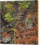 Stairway To The Sky Wood Print