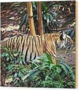 Stalking Wood Print