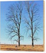 Standing Alone Together Wood Print