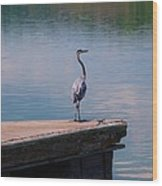 Standing On The Dock Wood Print