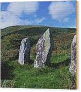 Standing Stone Alignment, Near Wood Print