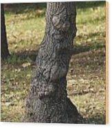 Standing Tall Wood Print