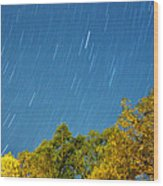 Star Trails On A Blue Sky Wood Print