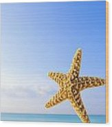 Starfish In Front Of The Ocean Wood Print