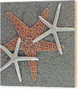 Starfish Three Wood Print by Sandi OReilly