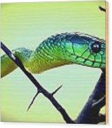Staring Snake Wood Print