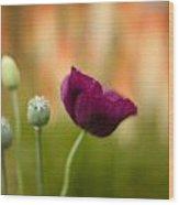 Stark Poppies Wood Print