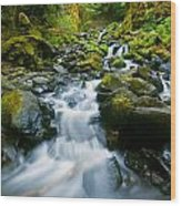 Starvation Creek Falls Wood Print