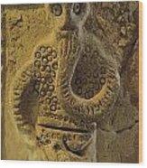 Statue In Iraq Wood Print