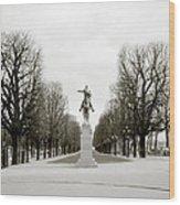 Nostalgia Of Paris Wood Print