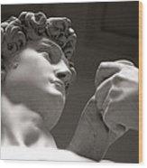 Statue Of David Wood Print