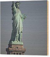 Statue Of Liberty, New York, Usa Wood Print