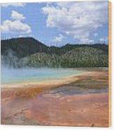 Steam Lake Wood Print