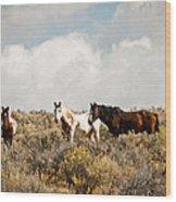 Steens Wild Horses Wood Print