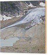 Stein Glacier, Switzerland Wood Print by Dr Juerg Alean