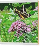 Stencilled Butterfly Wood Print